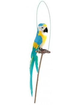 Perroquet plumes sur perchoir