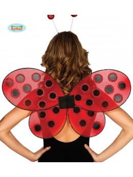 Ailes coccinelle