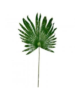 Feuille de palmier 68cm