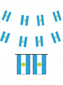 Guirlande pavillon argentine 10m