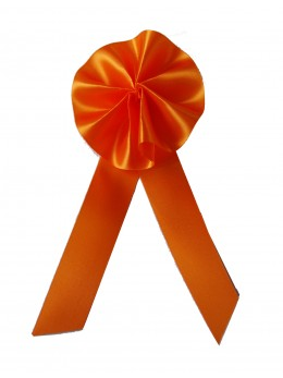 "Cocarde conscrits ""promo"" orange"