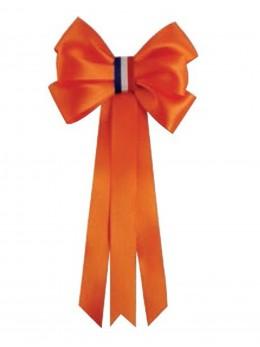 Cocarde conscrits classe orange