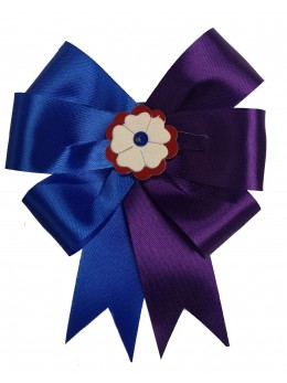 Cocarde parade bleu et violet