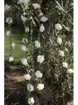Guirlande de roses blanches 1m20