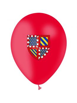 10 Ballons Bourgogne 30cm