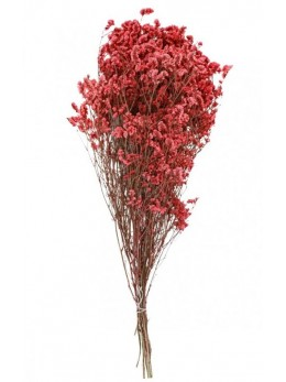 Bouquet gypsophile rose 60cm