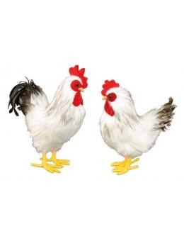 Déco poule/coq avec plumes