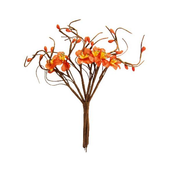 Bouquet fleurs de pommier rouge orangé