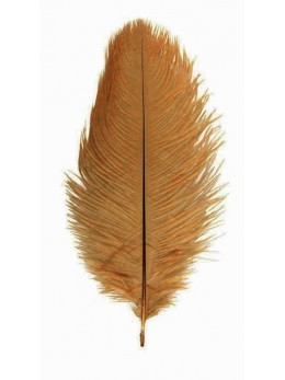 5 Plumes autruche marron 20-25cm