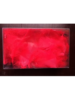 Boite plumes rouge 10cm