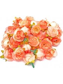 24 Roses corail 1,3cm