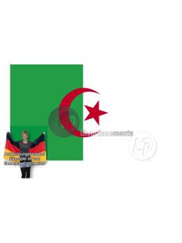 Drapeau cape Algérie  90x150